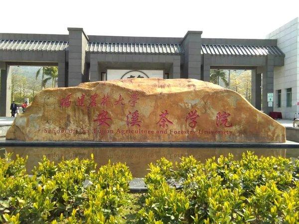 安溪茶学院