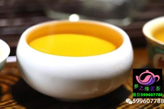 陈香香铁观音